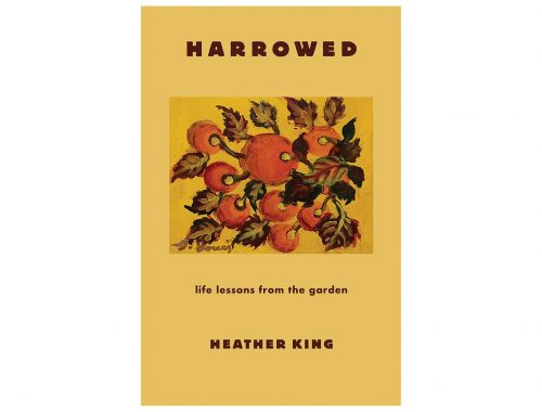 Harrowed by Heather King